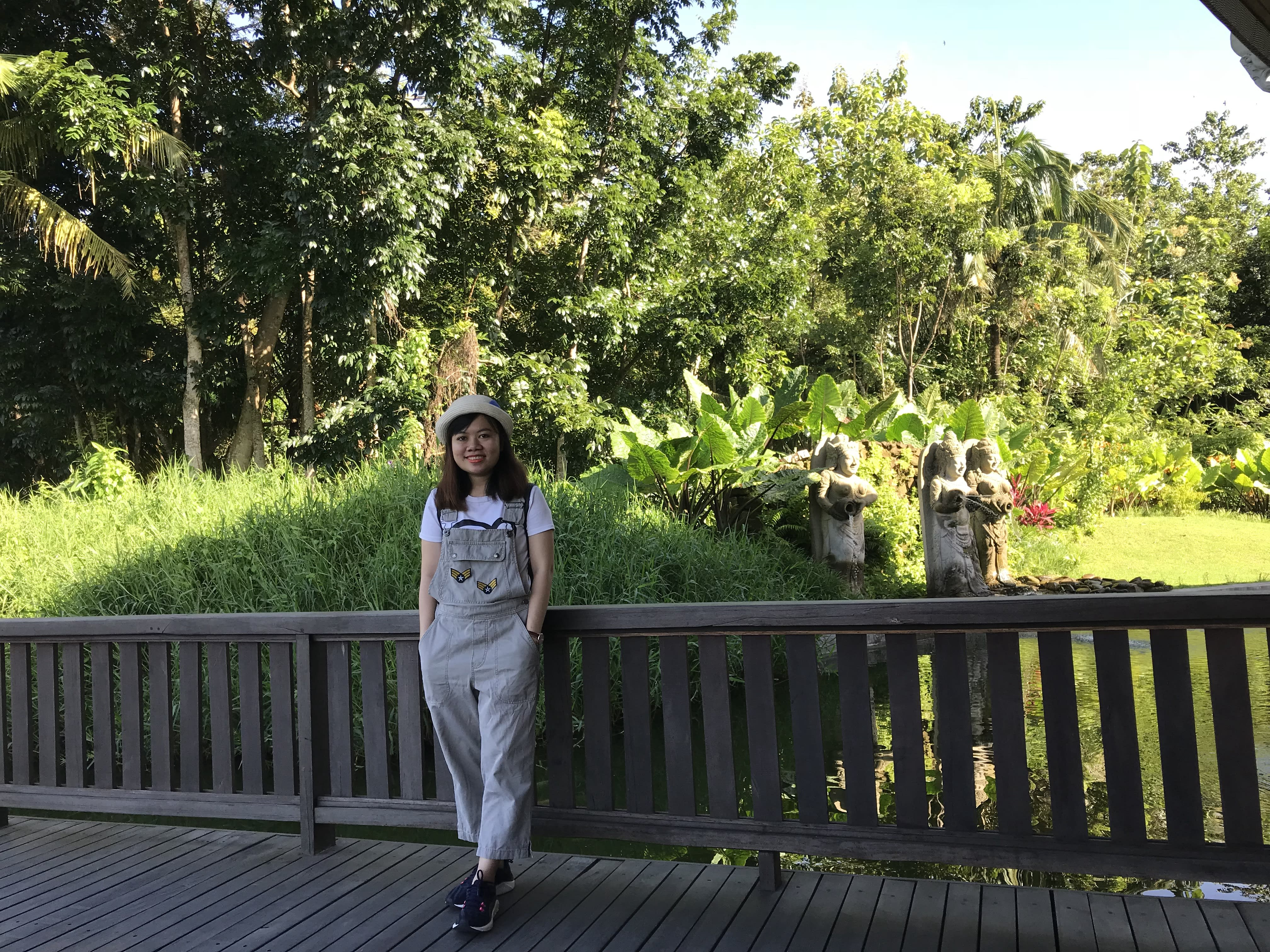 rừng khỉ bali