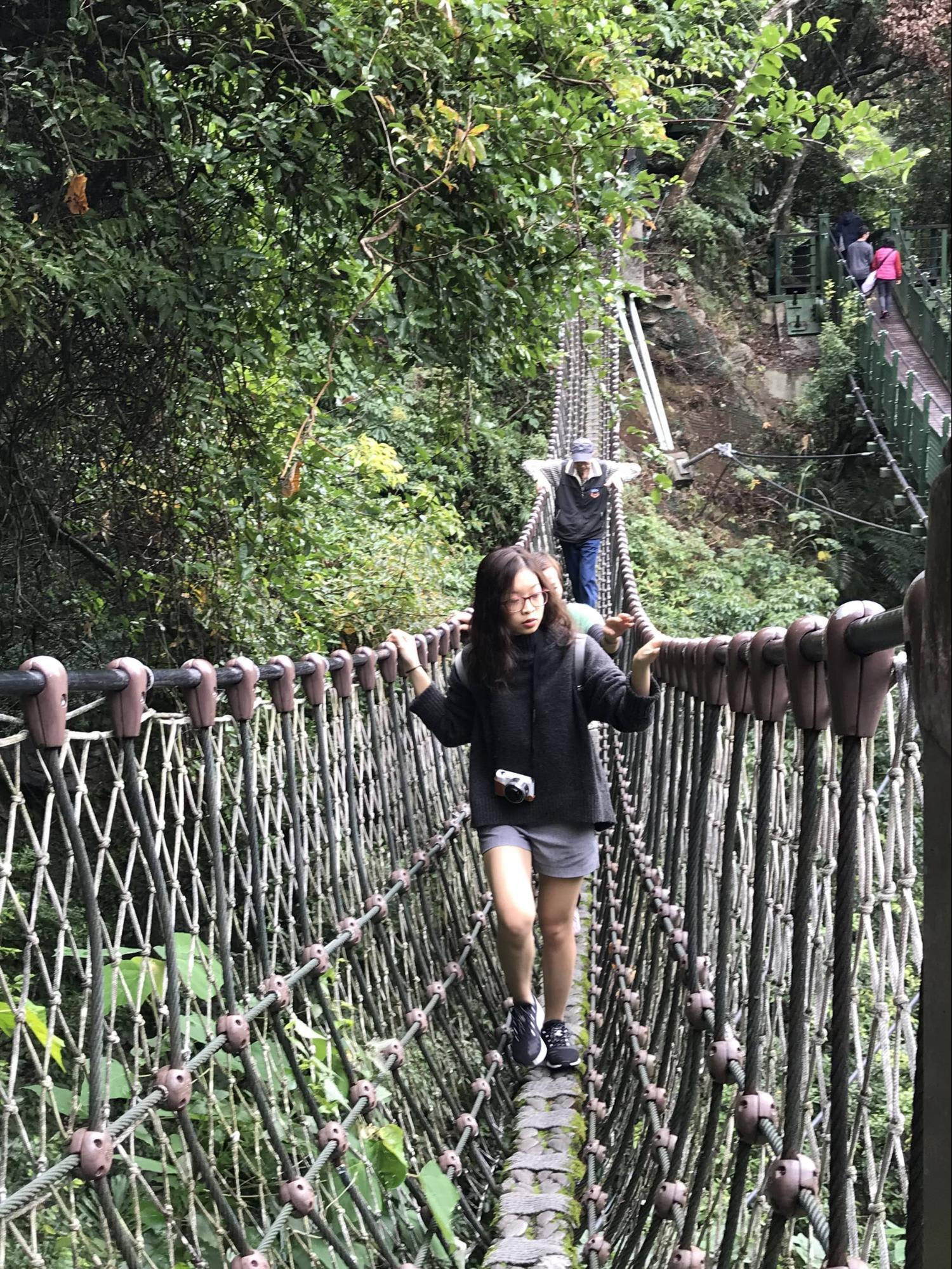 cầu treo adventure plank