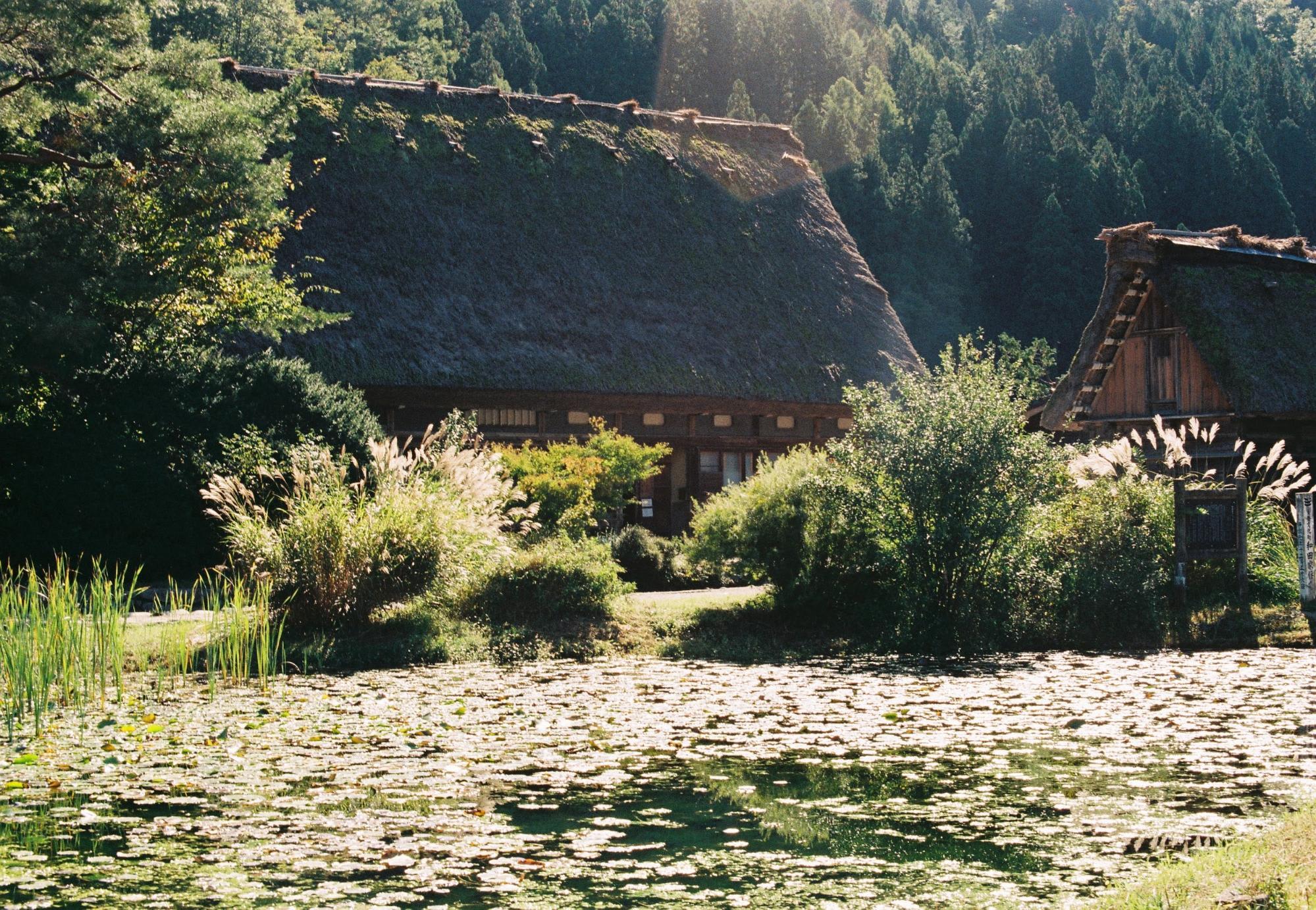 nhà vườn và hồ tại shirakawa-go