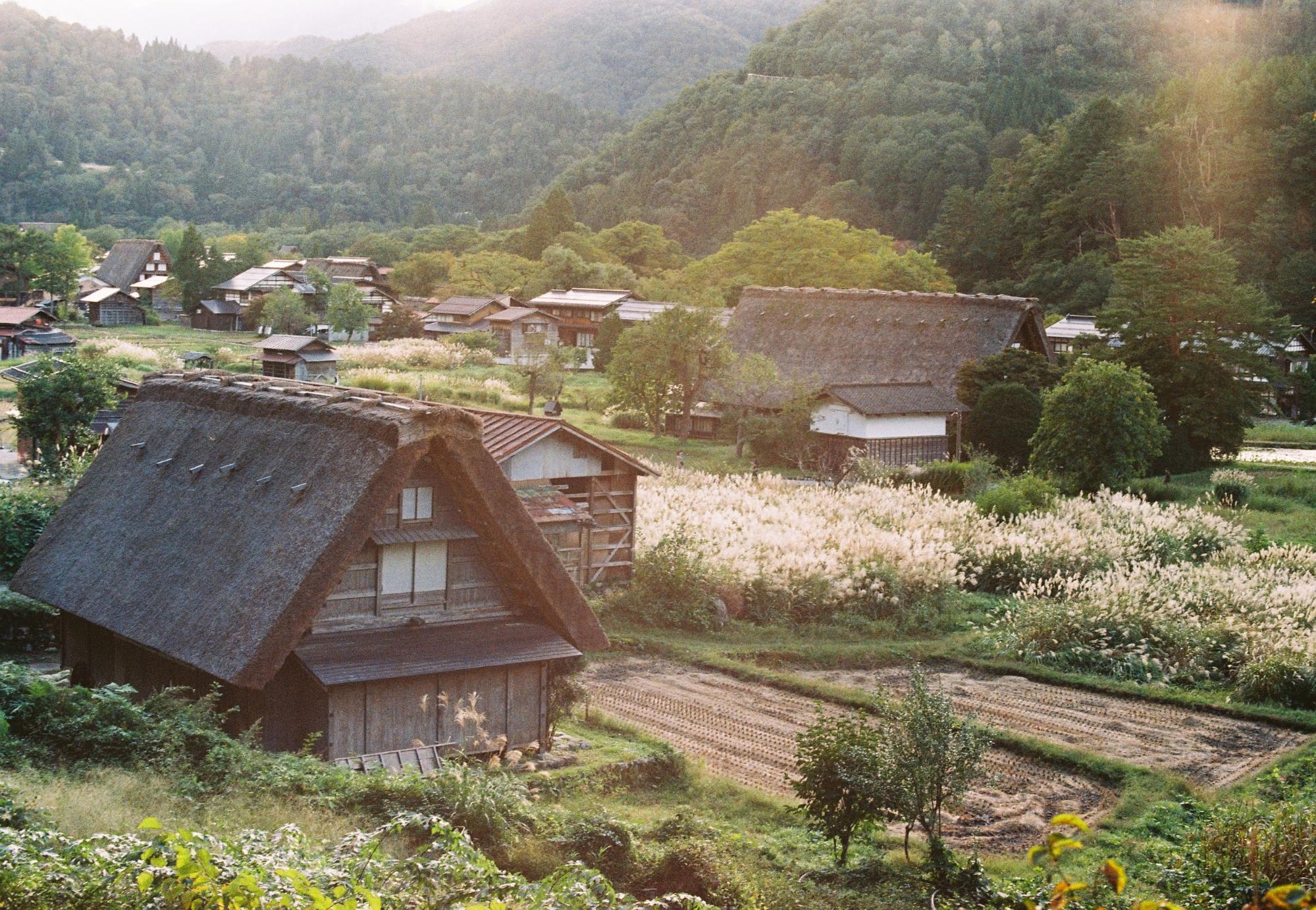 khung cảnh làng shirakawa-go