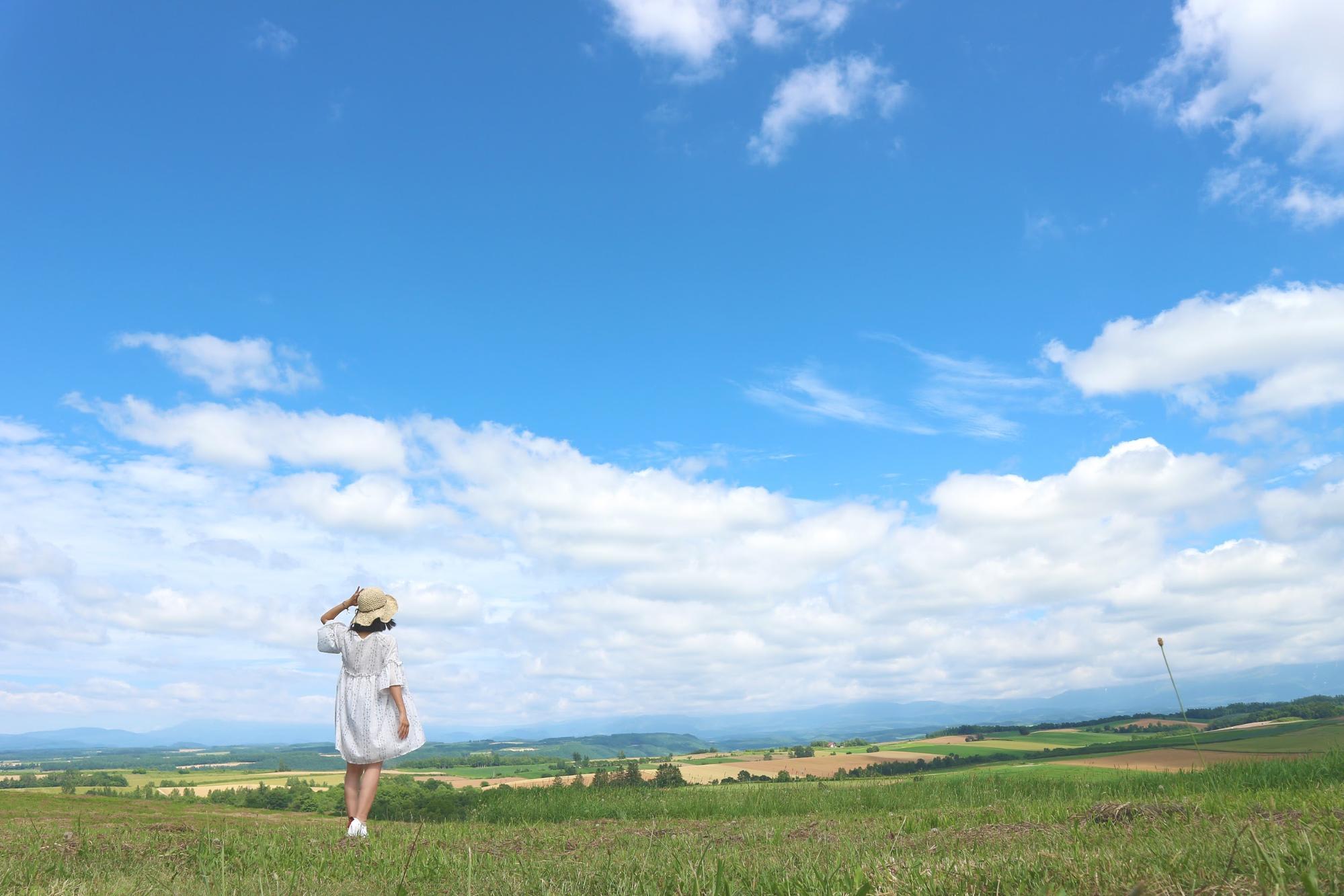đồng cỏ tại hokkaido
