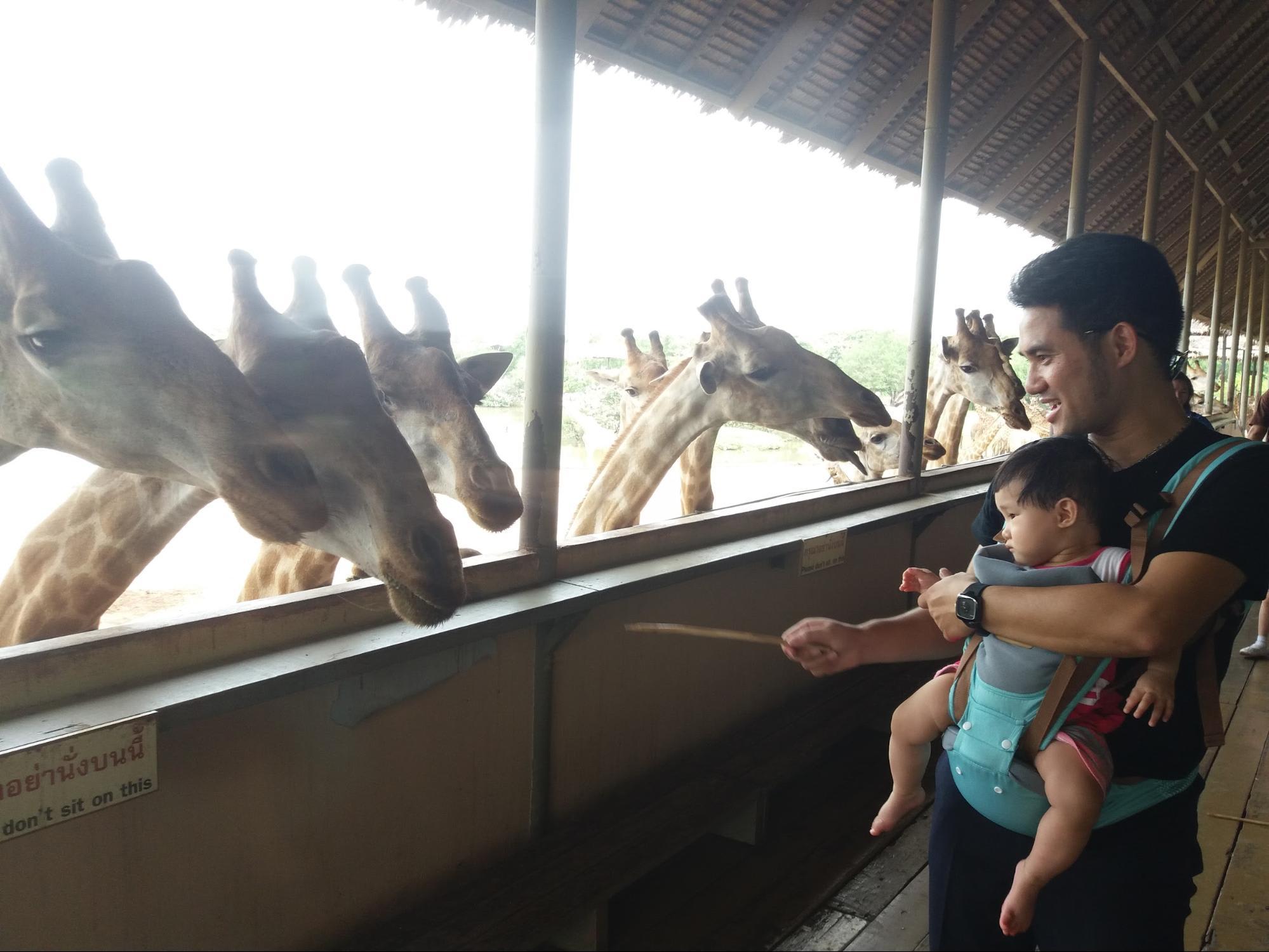 Cùng con đi khắp Thái Lan trong 4N4D 9