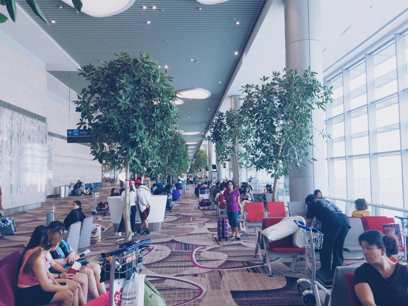 sảnh đợi trong sân bay changi