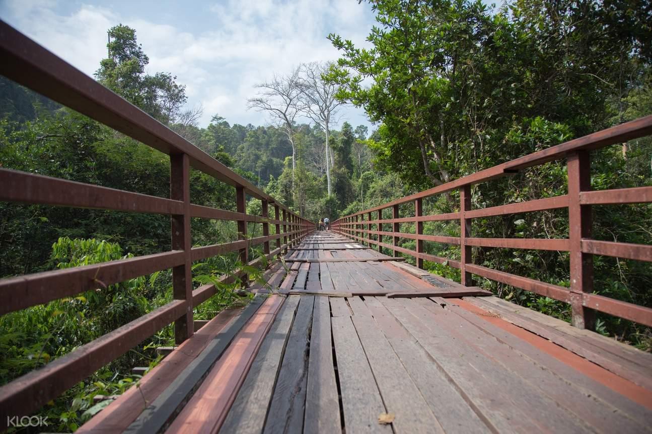 cây cầu tại công viên quốc gia khao yai