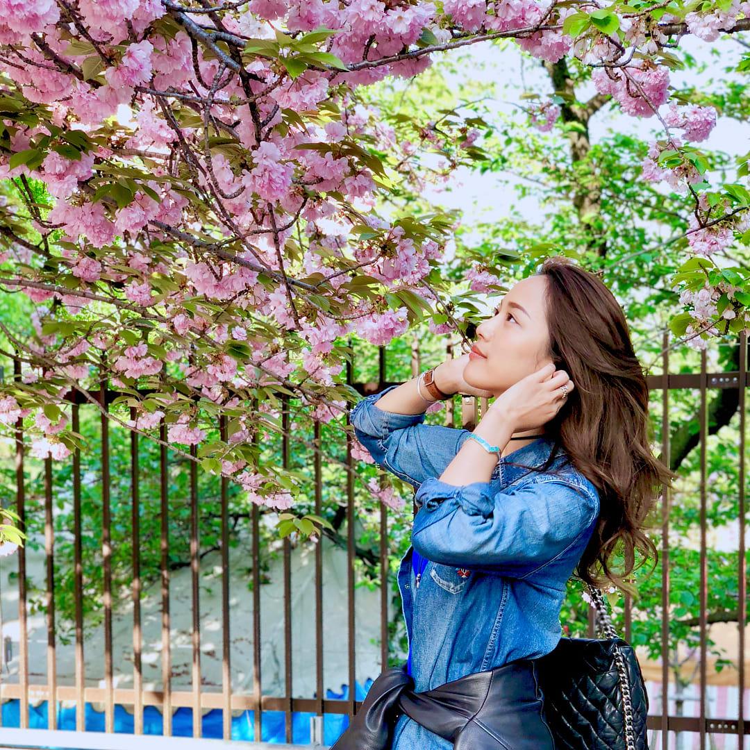 18 địa điểm ngắm hoa anh đào bạn không thể bỏ lỡ mùa xuân này 16