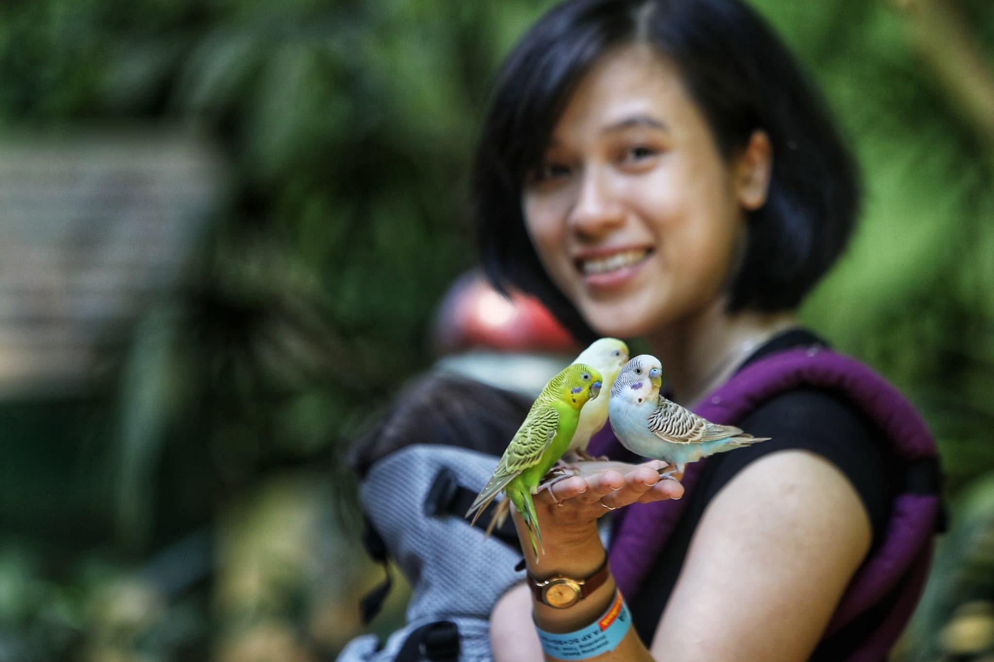 Kinh nghiệm khám phá Langkawi, Malaysia dành cho gia đình có trẻ nhỏ 7