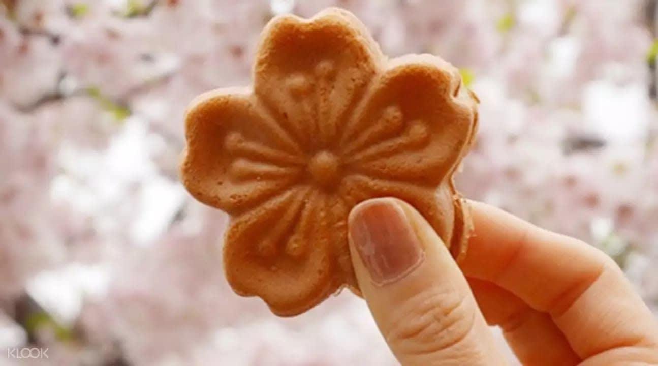 Giấc mơ anh đào: 11 điểm ngắm hoa đẹp nhất Hàn Quốc không thể bỏ lỡ 11
