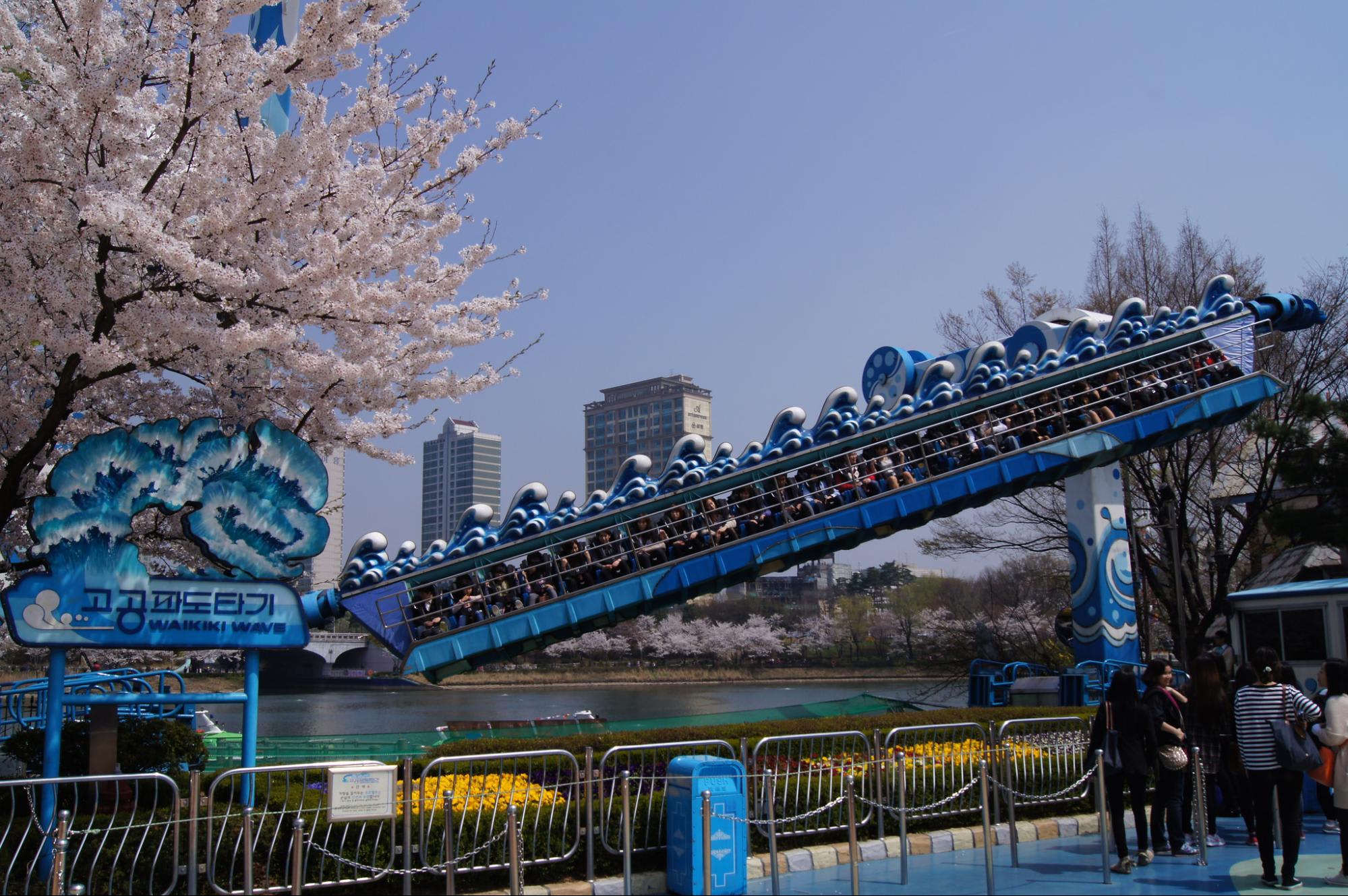 Giấc mơ anh đào: 11 điểm ngắm hoa đẹp nhất Hàn Quốc không thể bỏ lỡ 3