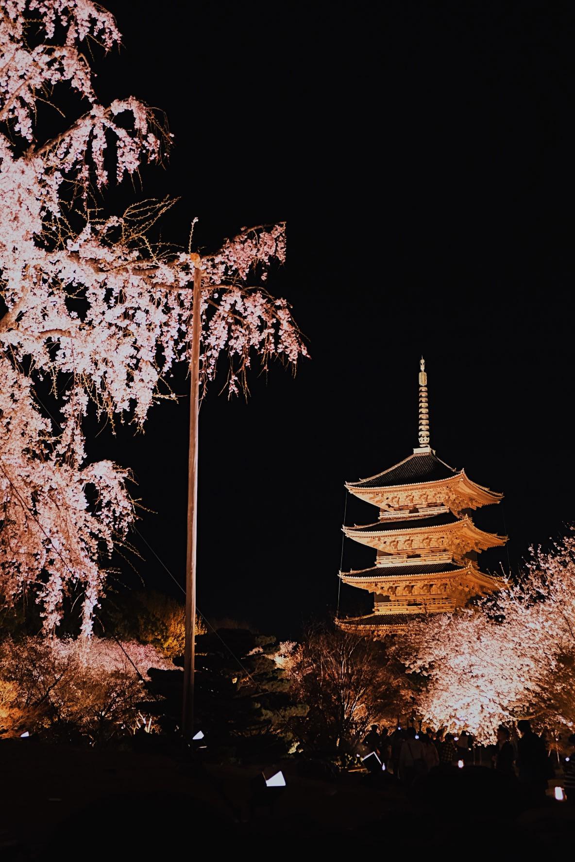 Lịch trình khám phá hết Kyoto, Osaka và Nara chỉ với 13tr! 12