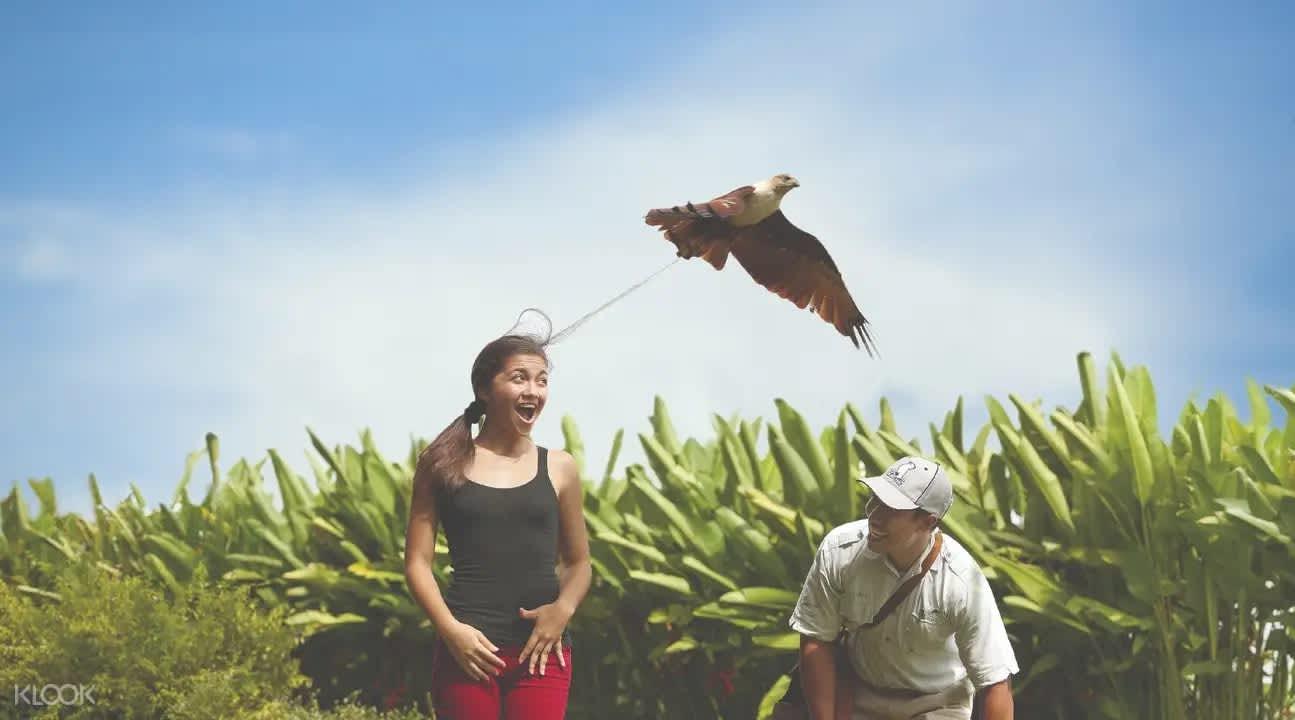 nhung hoat dong thu vi tai bali thich hop cho gia dinh co tre nho18 Những hoạt động thú vị tại Bali thích hợp cho gia đình có trẻ nhỏ!!!