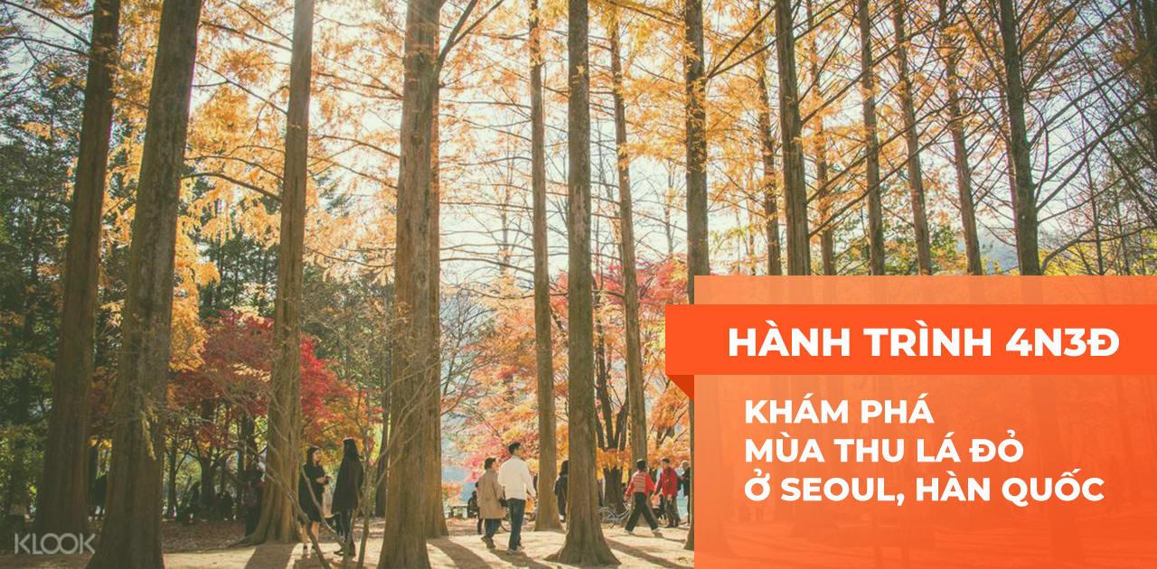 hanh trinh kham pha seoul mua thu la do 4n3d cover final
