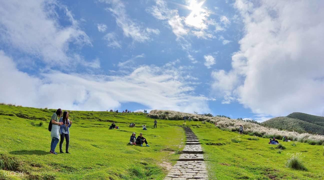 ghé qua công viên yangmingshan khi khám phá đài bắc