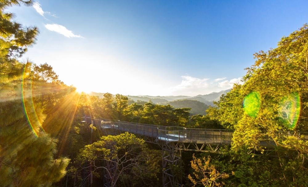 Thử Thách Ở Chiang Mai: Vui Chơi Với Budget Dưới 35$ Mỗi Ngày 16