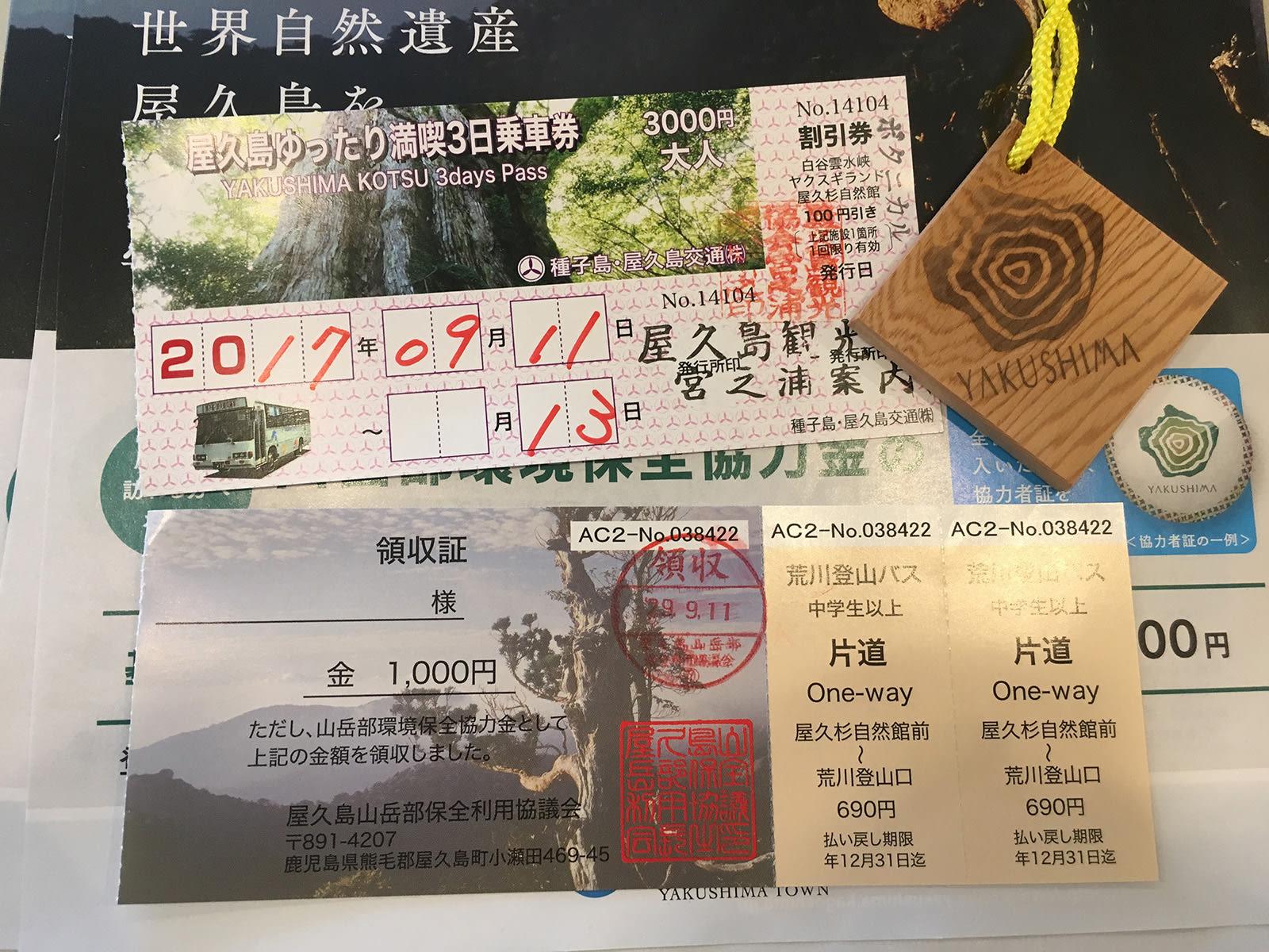 Yakushima – Vùng đất thánh của Mononoke Hime 4