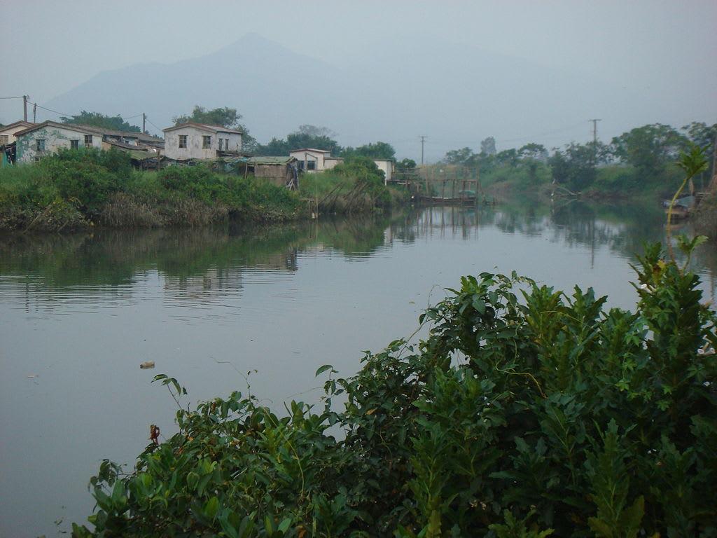 Nam Sang Wai Countryside