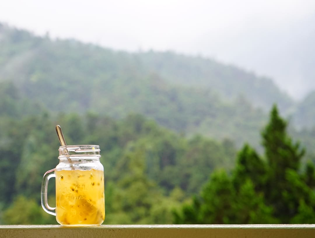 Aiyu Jelly drink in Alishan