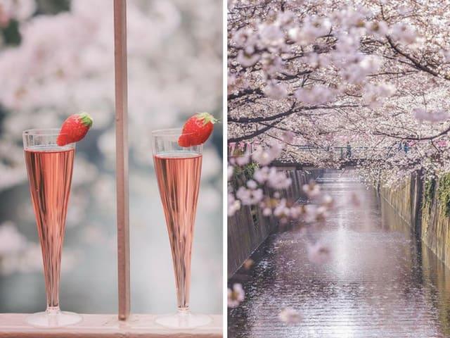 Meguro Cherry Blossom Wine