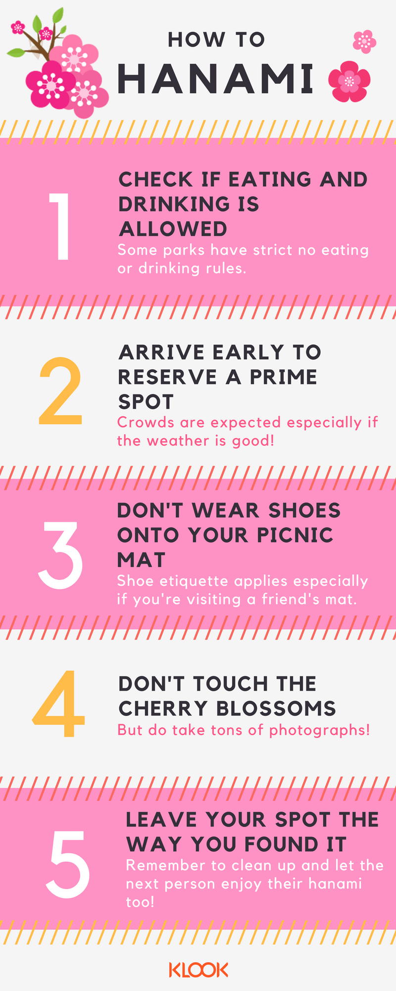 5 ways to hanami infographic