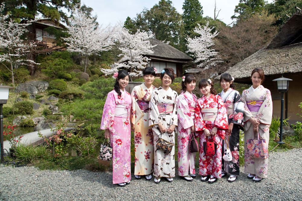 girls in kimono in cherry blossom