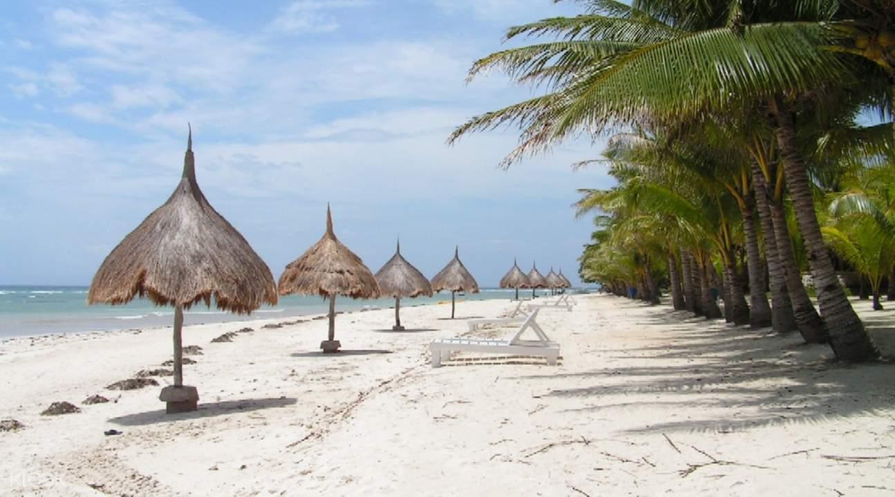 panglao bohol philippines beach