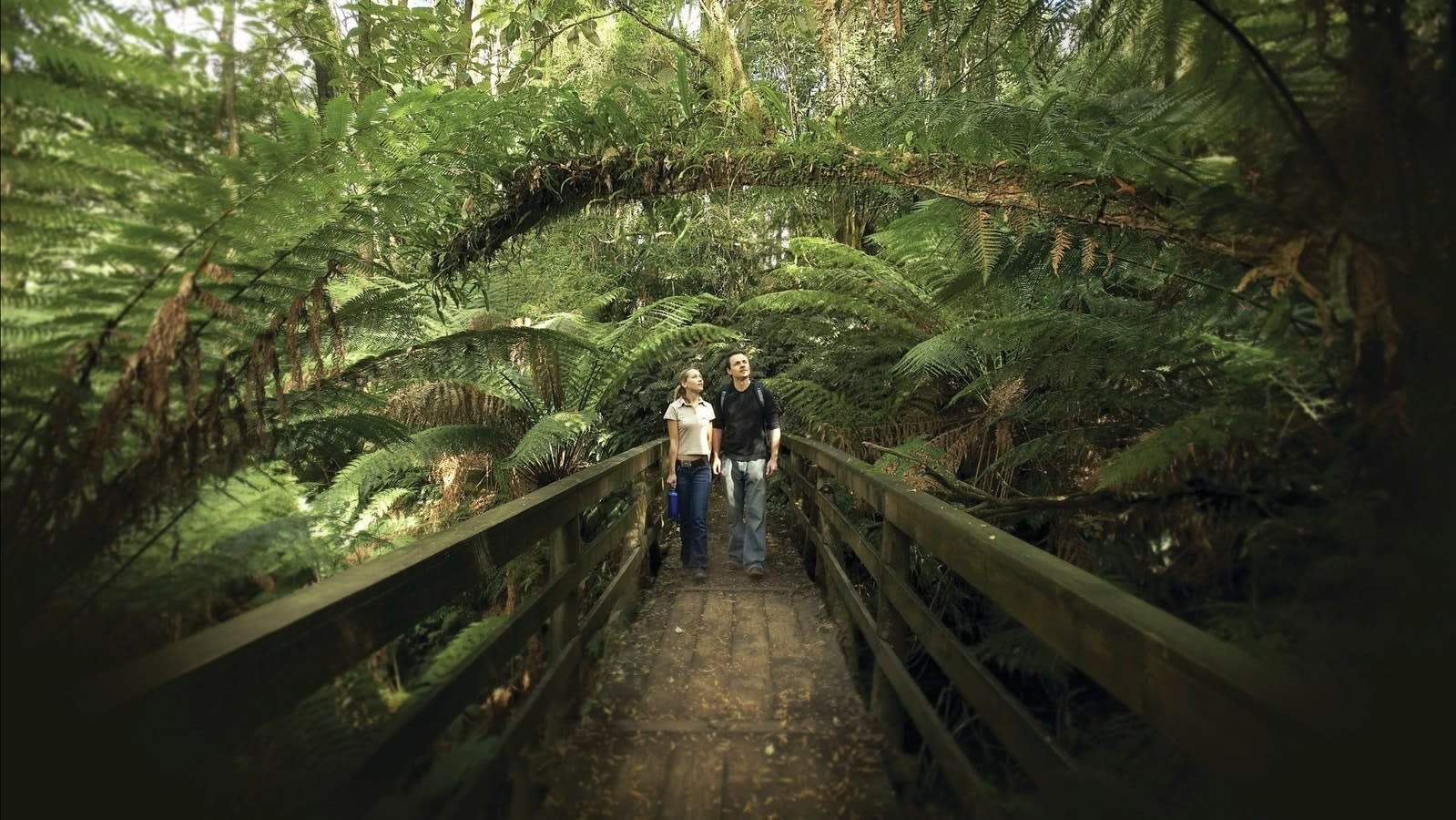 Otway Melbourne Road Trips