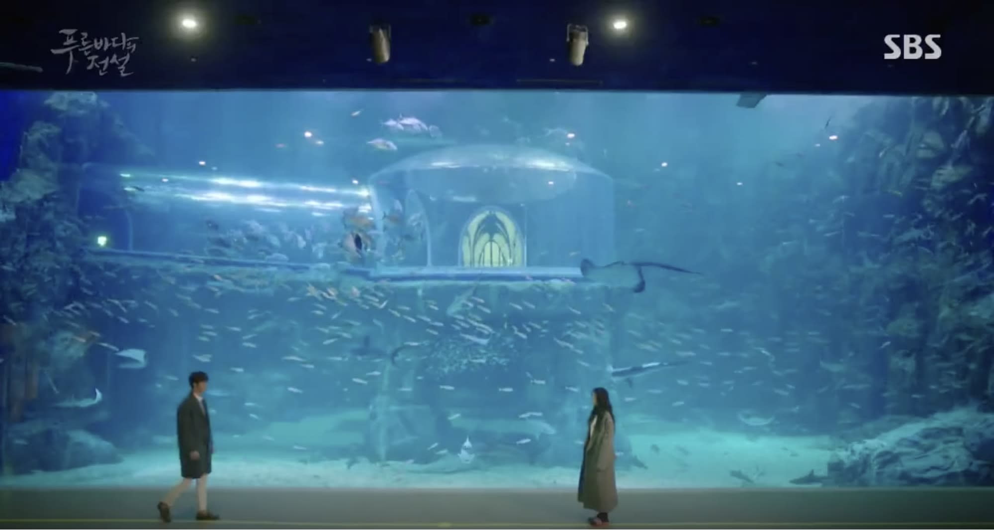 Aqua Planet Yeosu in Legend of The Blue Sea