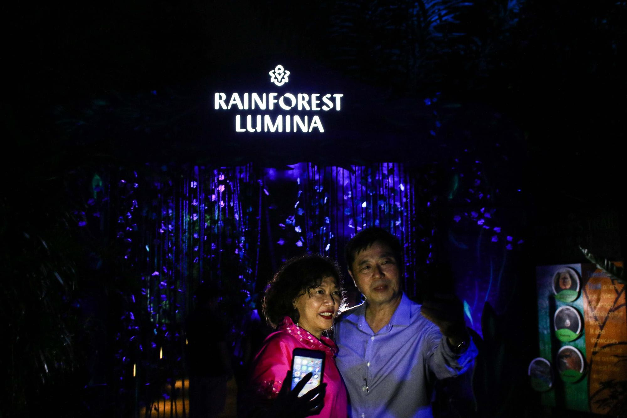 Rainforest Lumina The Arch Singapore Zoo