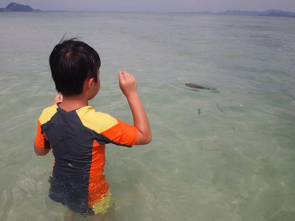 Koh Khai & Koh Khai Nai Islands Phuket