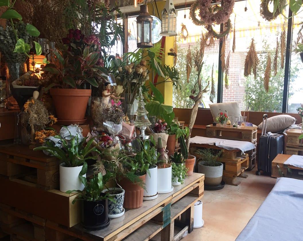 ver's garden cafe