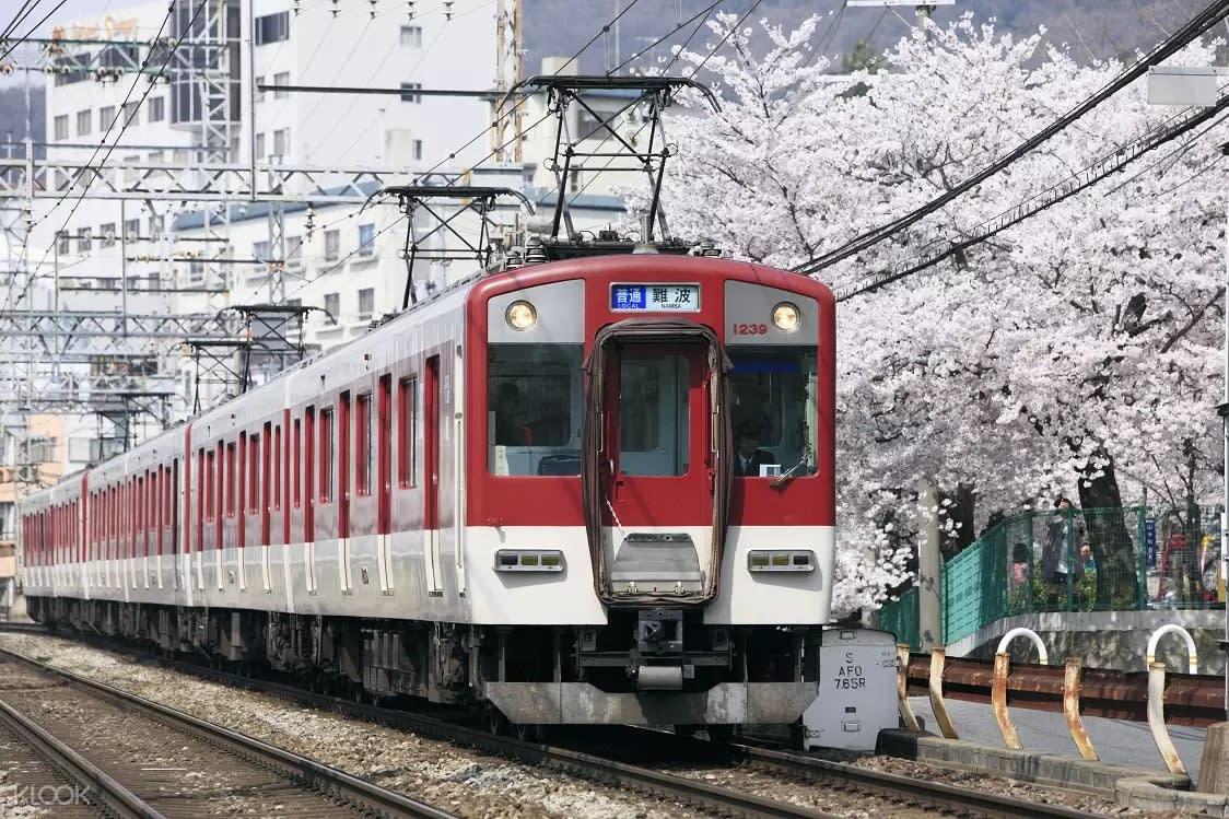 Kintetsu Rail Pass train