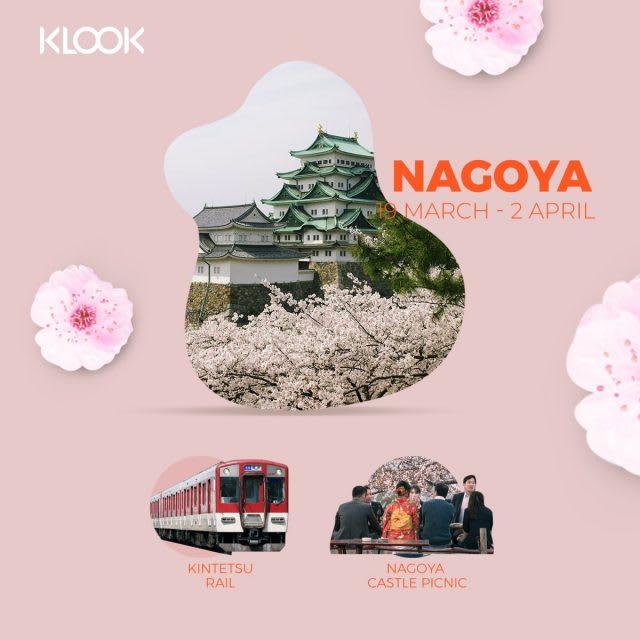 nagoya cherry blossom forecast