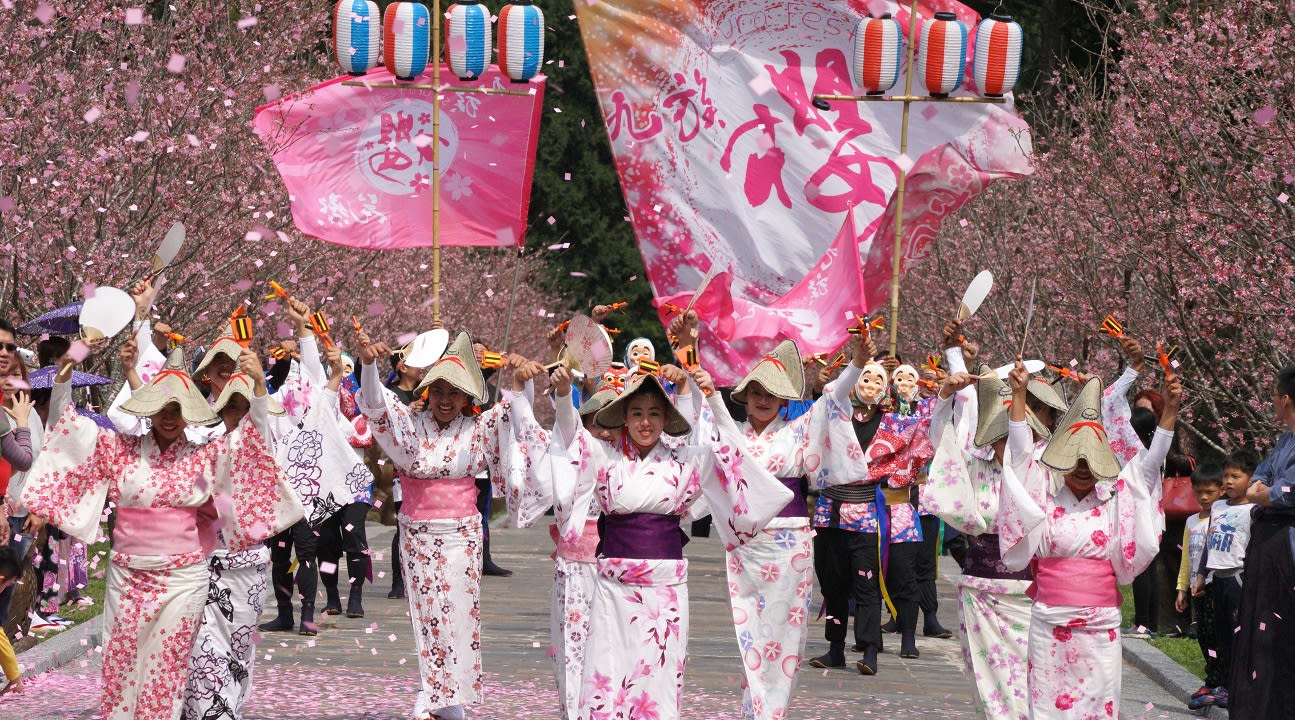 Sun Moon Lake cherry blossom festival activities
