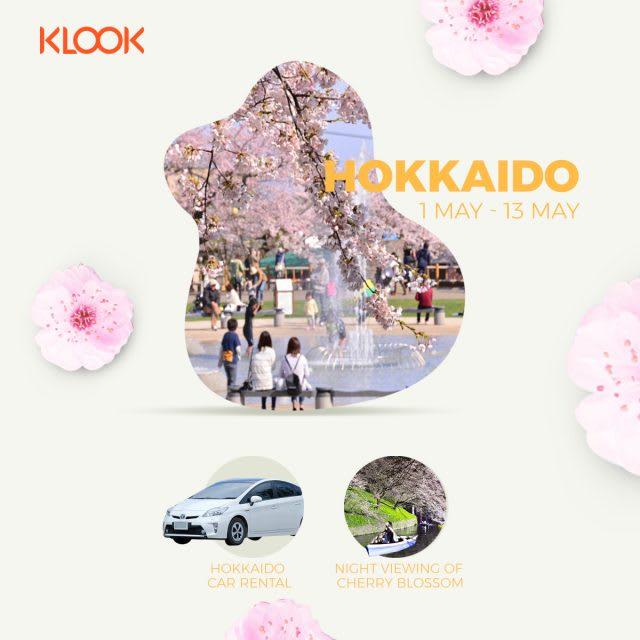 hokkaido cherry blossom forecast 2019