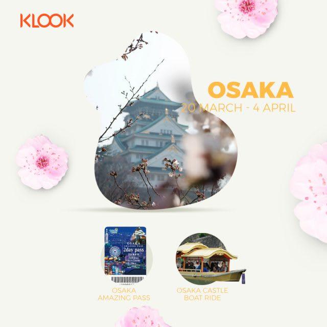 osaka cherry blossom forecast 2019