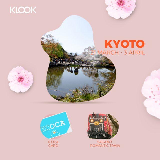kyoto cherry blossom forecast 2019