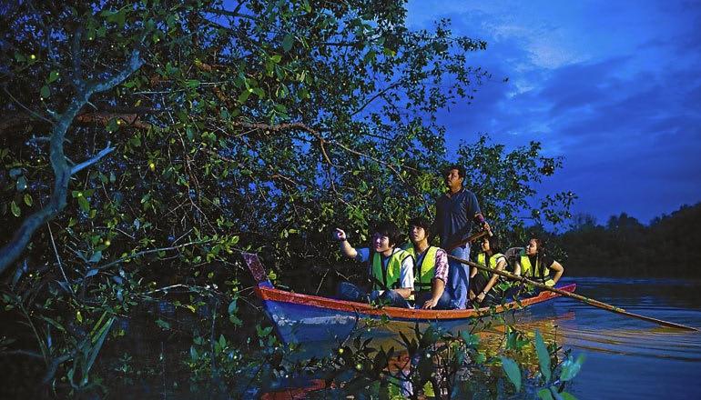 Kuala Lumpur fireflies boat ride