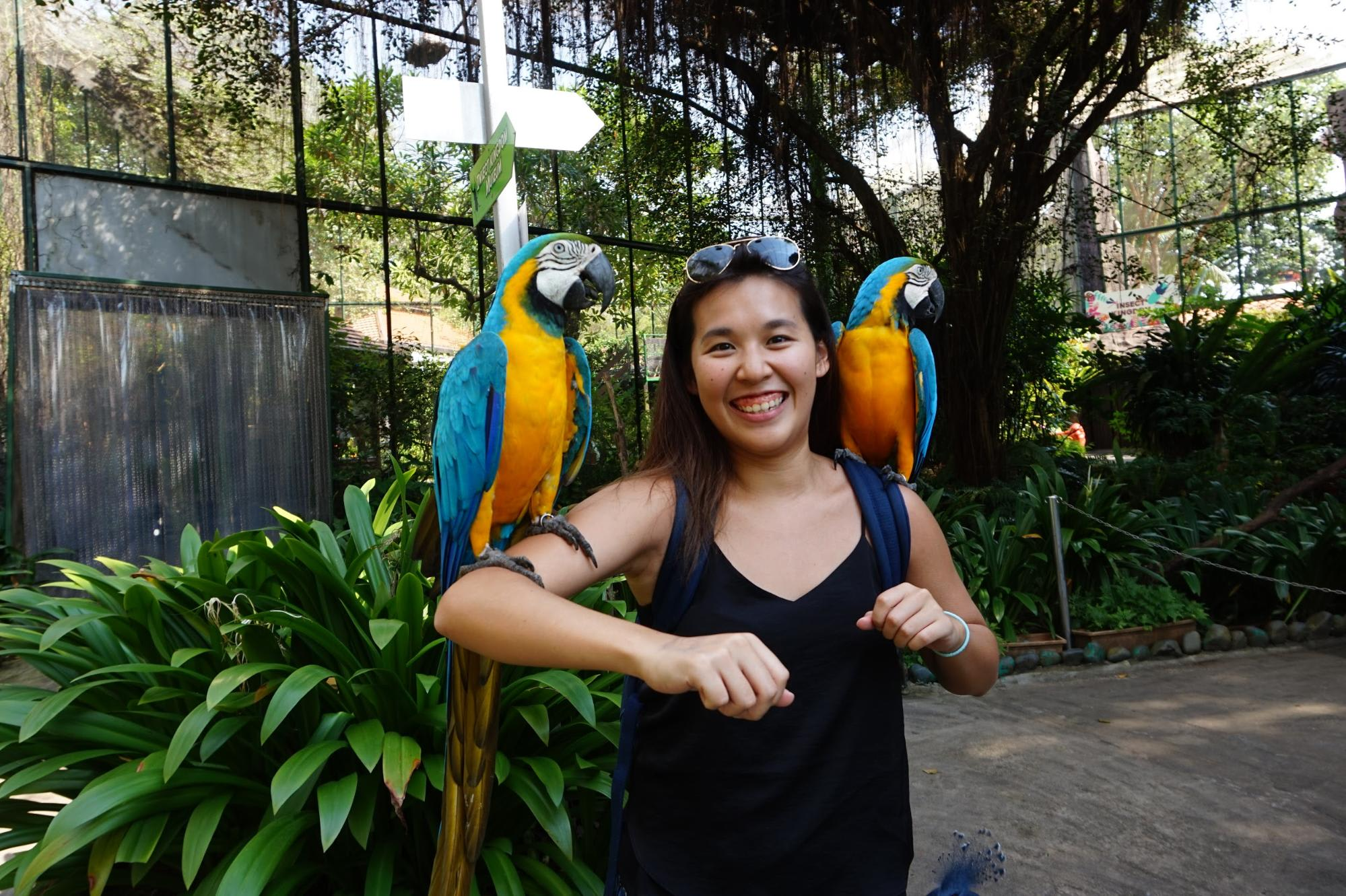 Sentosa Animal Encounter