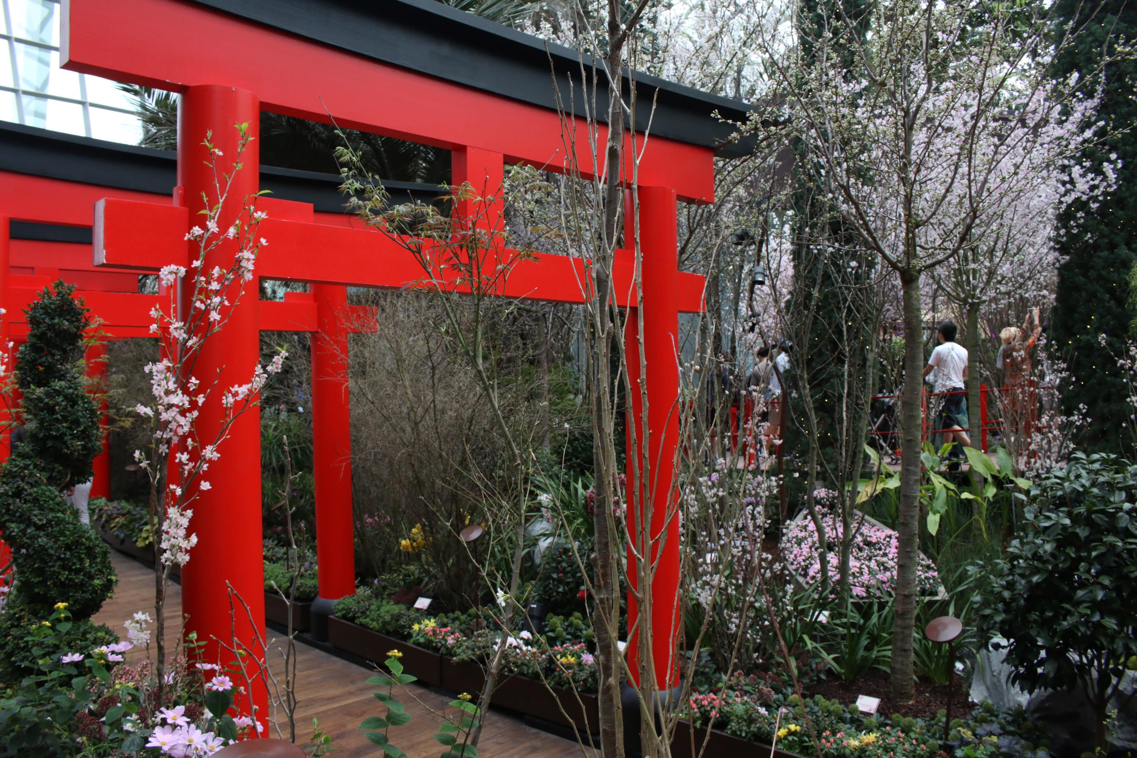 Sakura Matsuri GBTB Torii Gates