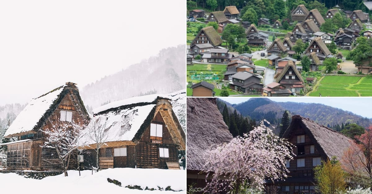 shirakawago guide1