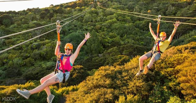 Adventure activities Auckland - Waiheke Island zip lining
