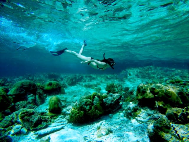 Romantic things to do in Phuket for couples - Phi Phi snorkelling tour