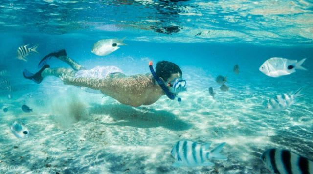 Top things to do in Bali - Blue Lagoon Snorkeling in Bali