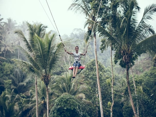 Top things to do in Bali - Bali swing