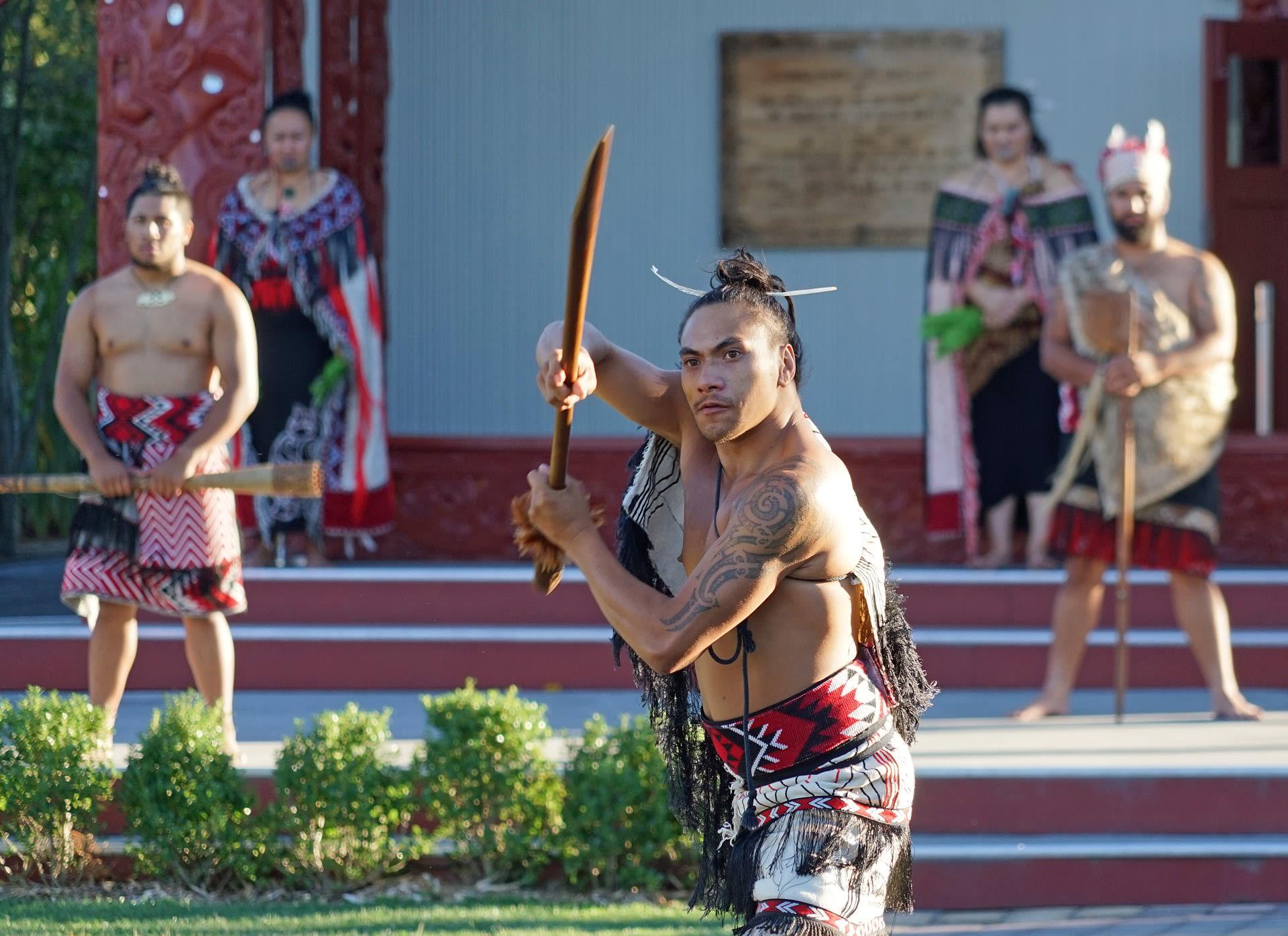 Maori Painted Warrior New Zealand