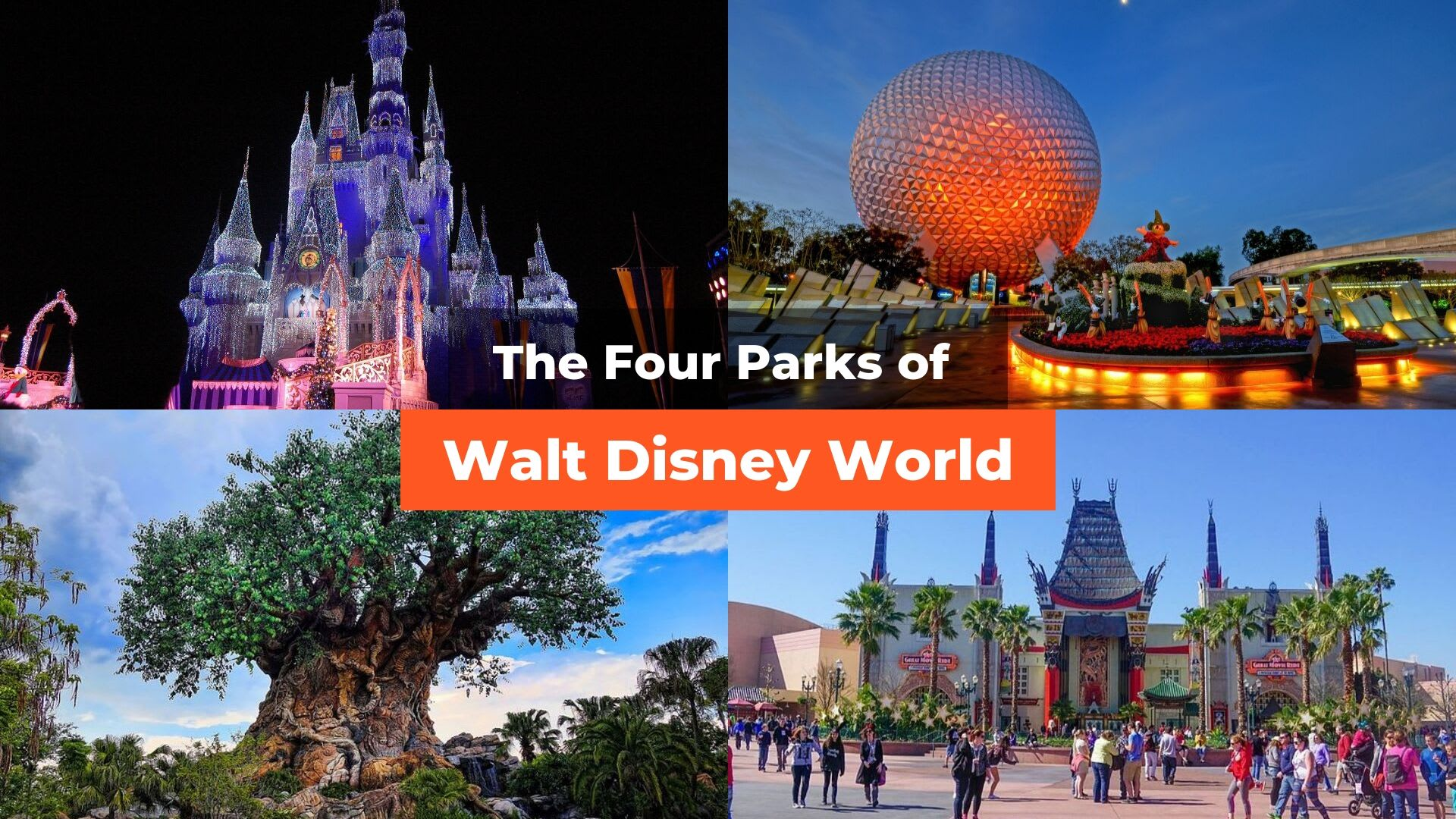 disney-world-featured