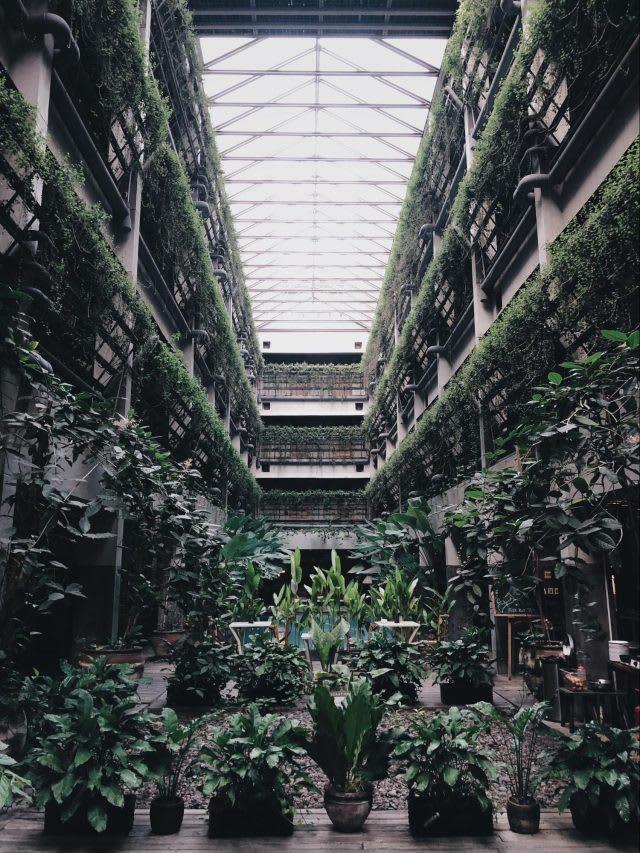 yogyakarta budget guide greenhost boutique hotel