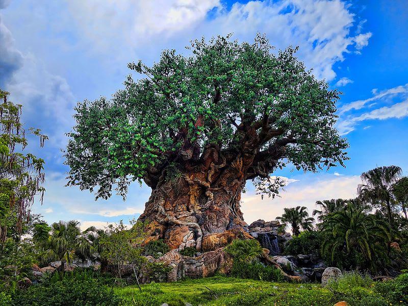 disney-world-tree