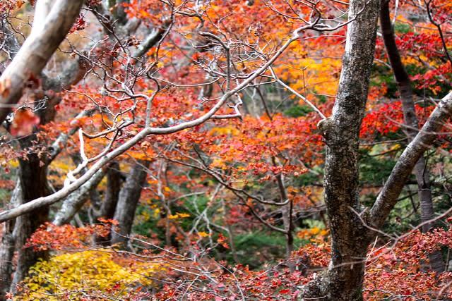 september-monthly-roundup-halla-mountain