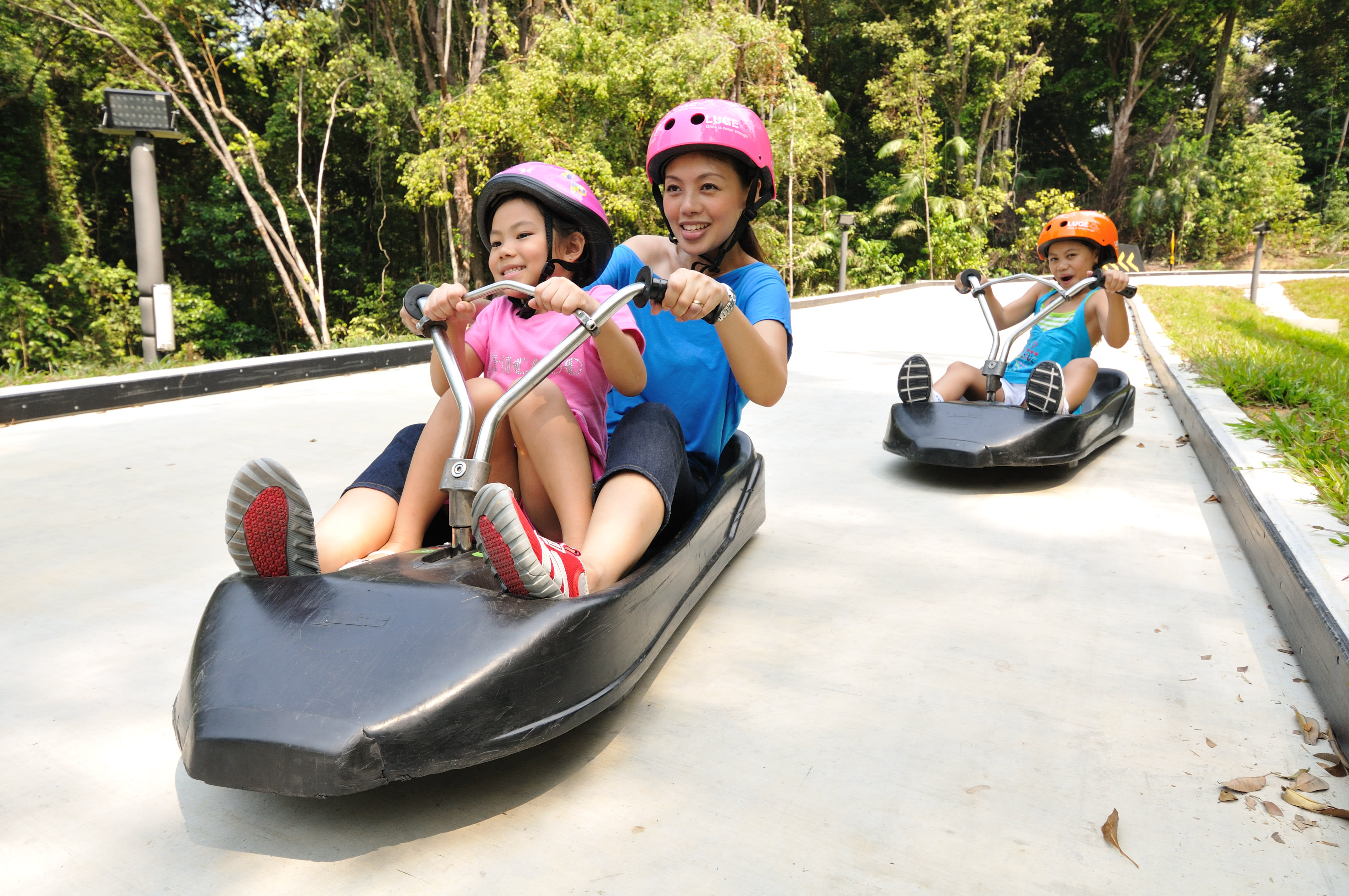 10-activities-families-skyline-luge