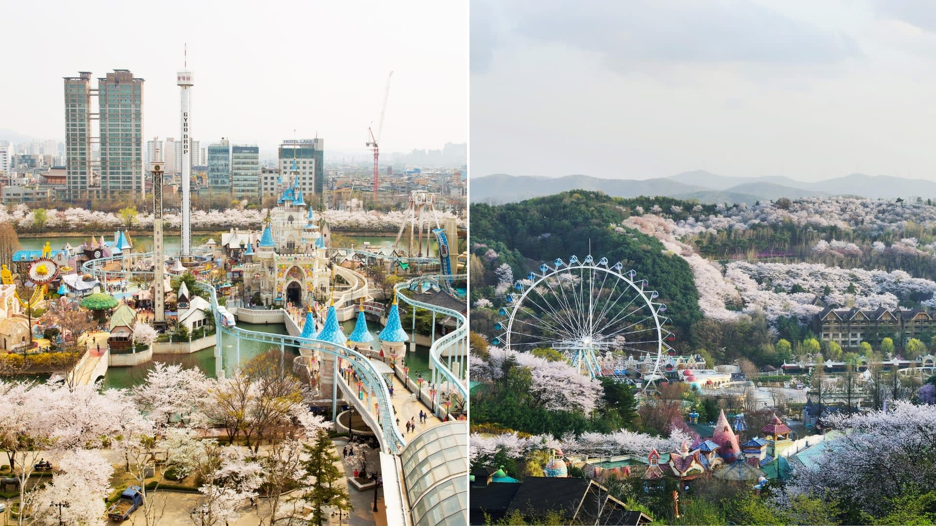 theme-parks-korea